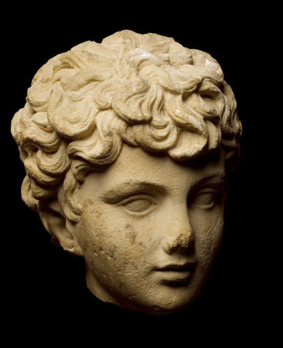 A Marble Head of a Boy